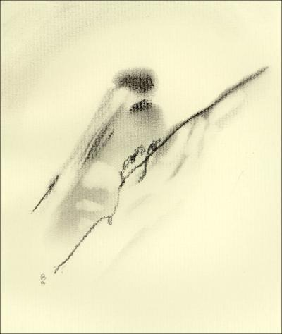 Chickadee 01, 8 x 10 inches charcoal on paper