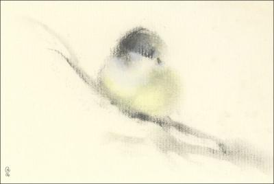 Chickadee 02, 4H x 6W inches charcoal on paper