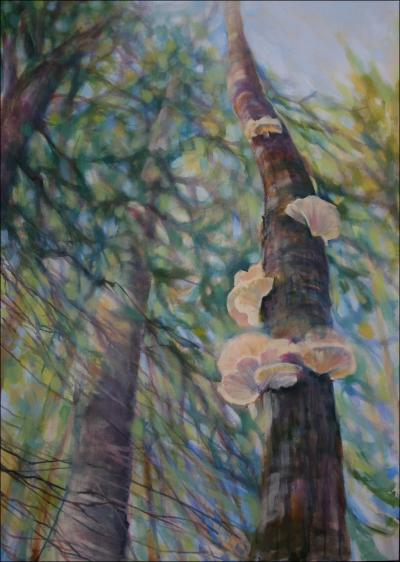 Polypore Fungi, work in progress, 59 H x 41 W x 2 D, acrylics on canvas