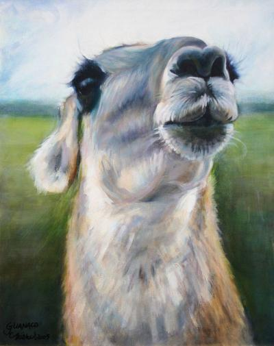 Guanaco, 20H x 20W inches acrylics on canvas