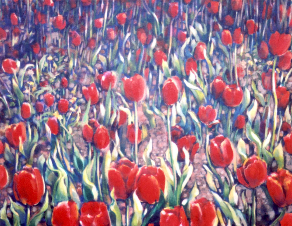 Dandelions Among the Tulips just started, 16H x 20W inches acrylics on canvas