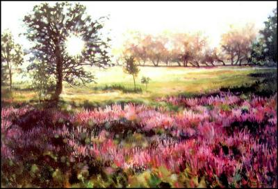 Field of Loosestrife, Fallowfield, Ontario Cnaada, 1993 acrylics 41H x 58W inches, narrow frame