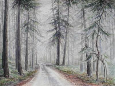 Salt Spring Island, B.C. - 16 x 22 inches pencil, eraser, dry pastels, colored pencils