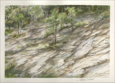 Nature Insists, growth through rock, North Carolina - 9 x 12 inches Graphite, W/C pencils, Dry Pastel