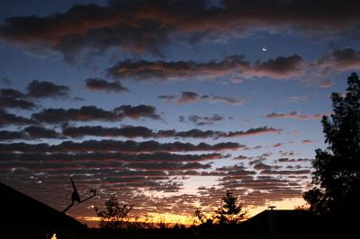 Mackerel Sky, sunrise November 17, 2006