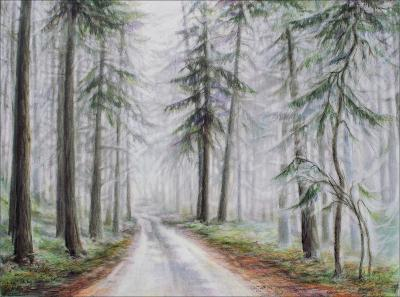 Salt Spring Island Fog, 18 x 24 inches pencil, eraser, dry pastels, colored pencils on paper, framed size 28.5 x 34.5 inches.
