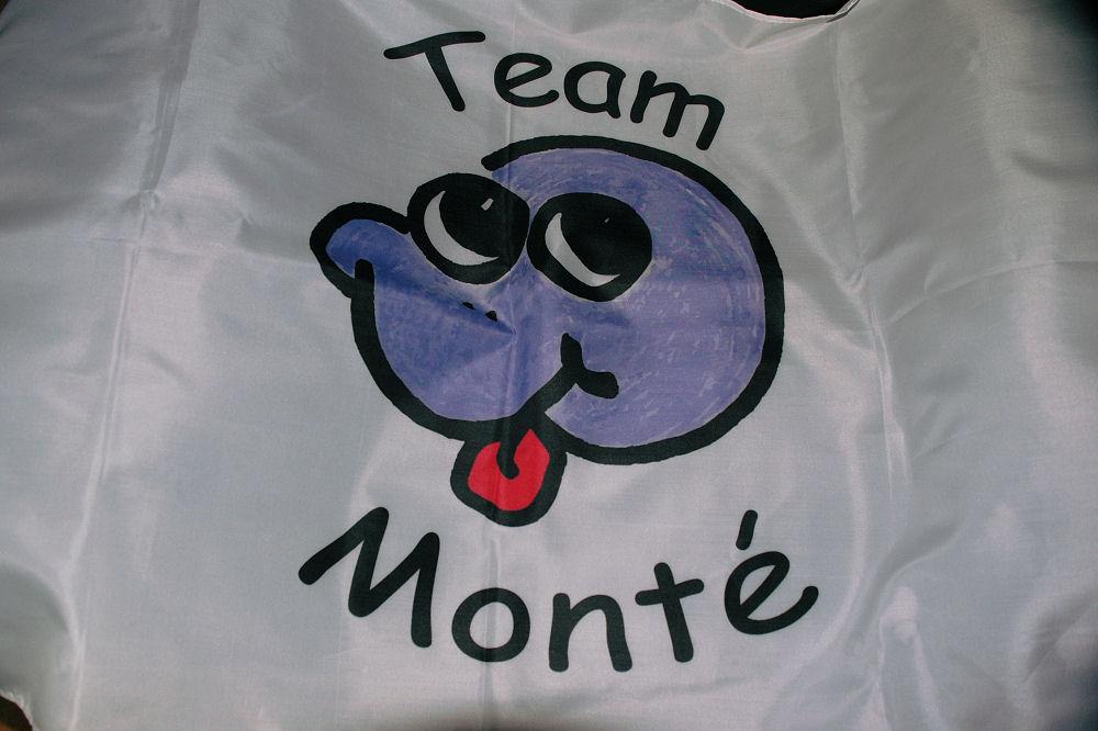 MonteFlag