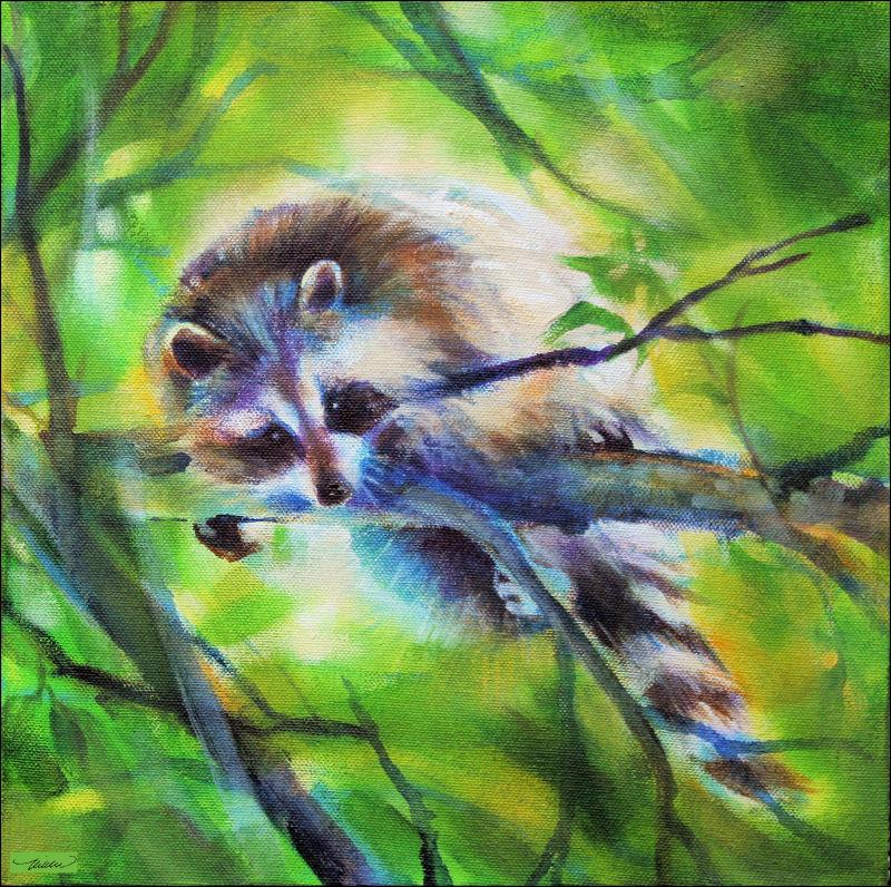 Raccoon  11 x 11 x 3 inches  Raccoon Acrylic Painting