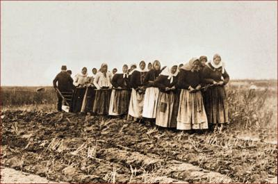 Doukhobor women breaking the land, Thunder Hill Colony, Manitoba, Canada, late 19th early 20th century