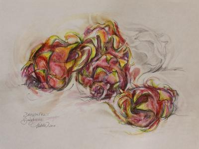 Dragonfruit, 9 x 12 inches watercolor pencils, graphite on paper