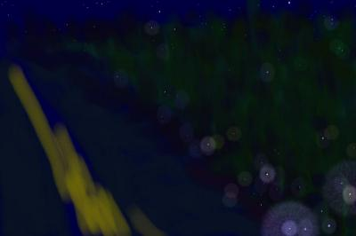 Stars and Fireflies, photoshop