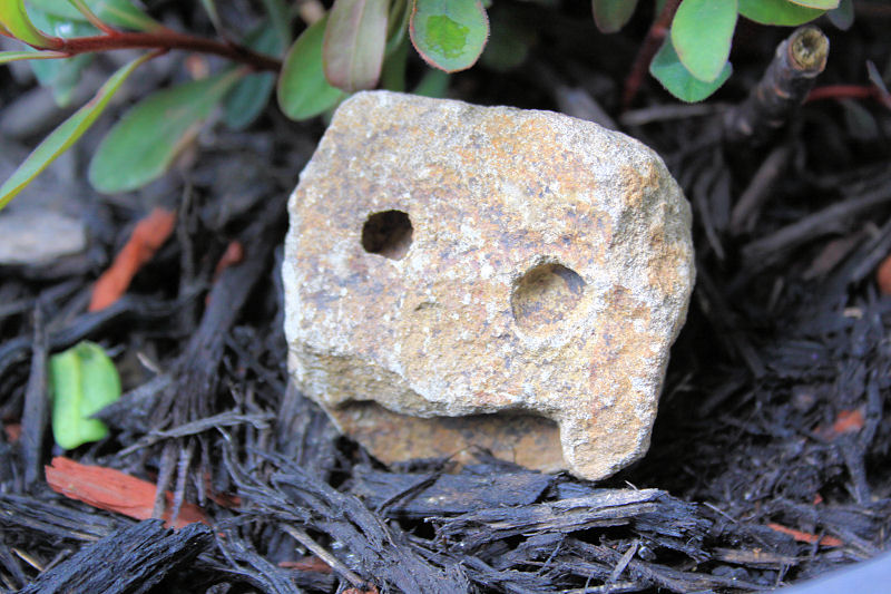 Monte face seen in a rock