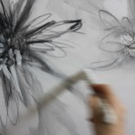 Detail of Chrysanthemums using primer with graphite