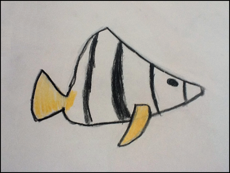 Fintan Fox, Angel Fish, pencil crayon on paper