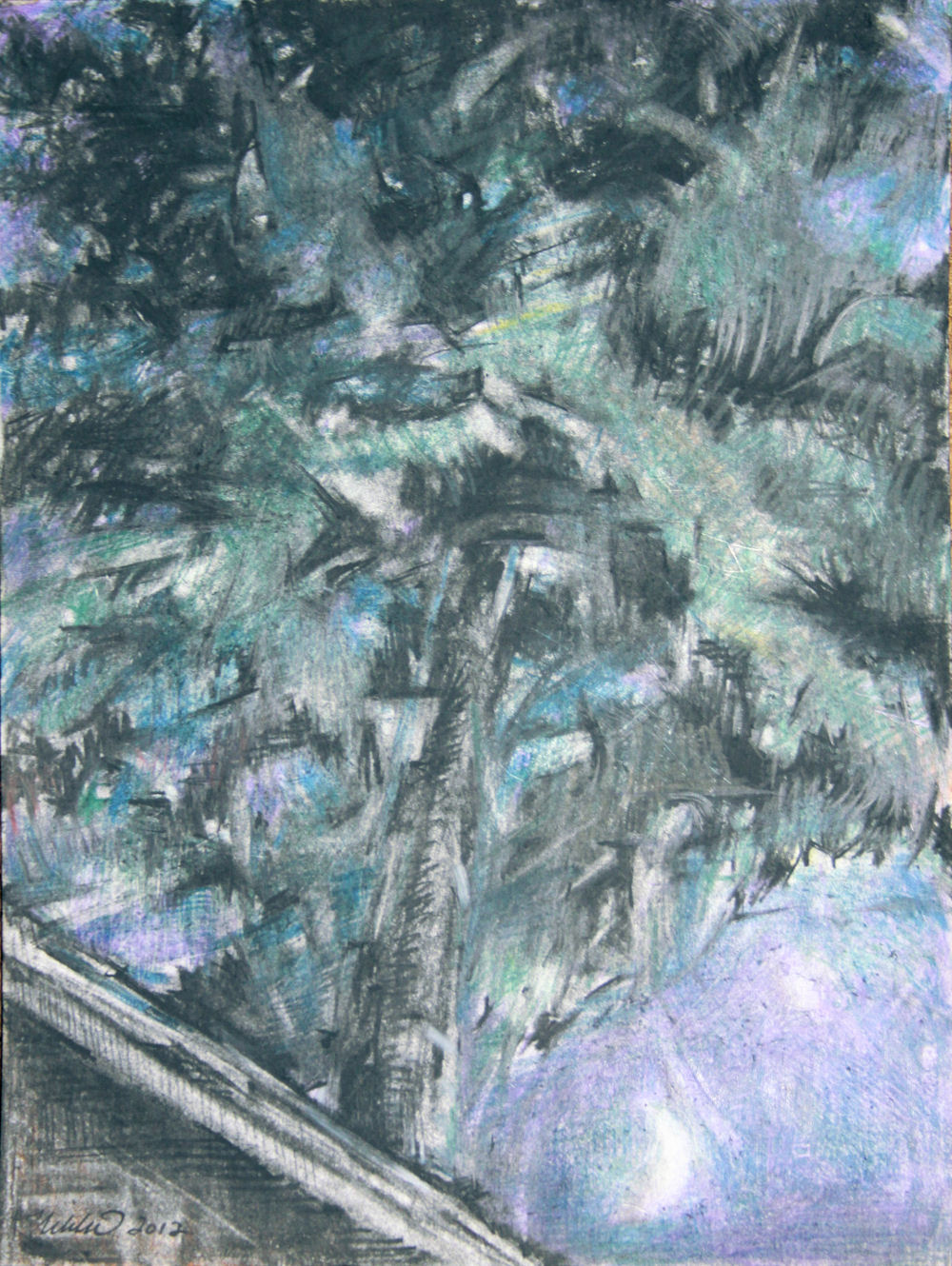 Stars in the Sweetgum, 12H x 9W inches charcoal and colored pencils on paper