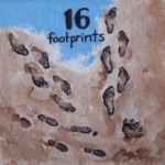 16 footprints