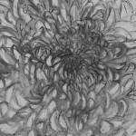 Chrysanthemums Chair, initial sketch detail