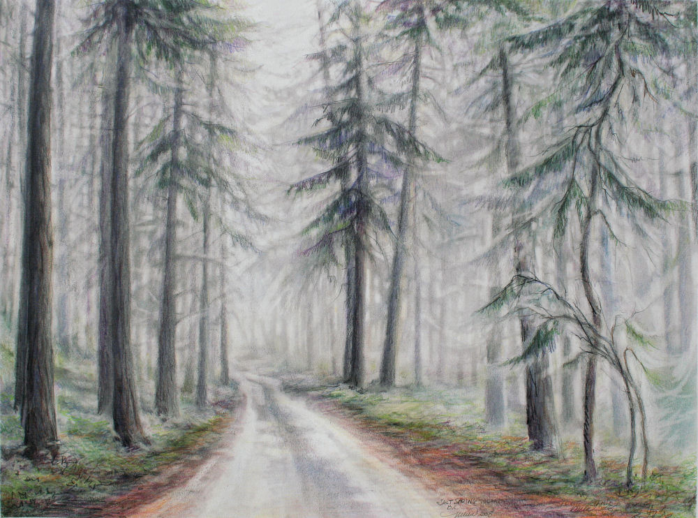 Salt Spring Island Fog, B.C. Canada, 18H x 24W inches graphite, dry pastels, colored pencils on paper, framed size 29H x 35W x 3D inches