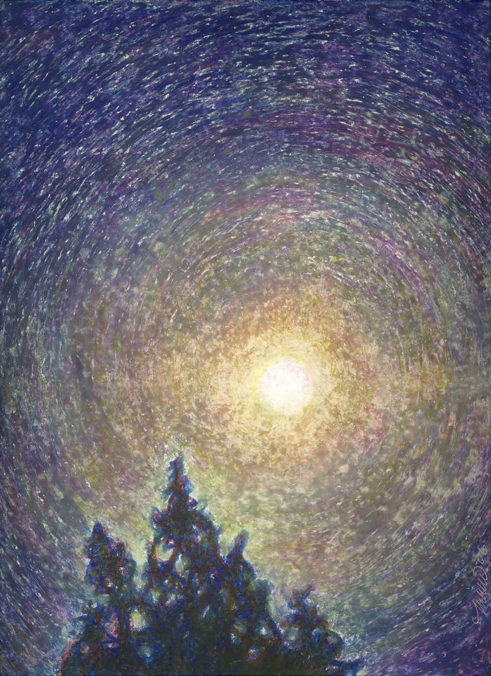 Moon Over Cypress, Neighborhood Cypress tree in Lewisville, Texas USA, 11 x 14 inches Oil Pastels on paper - sold -