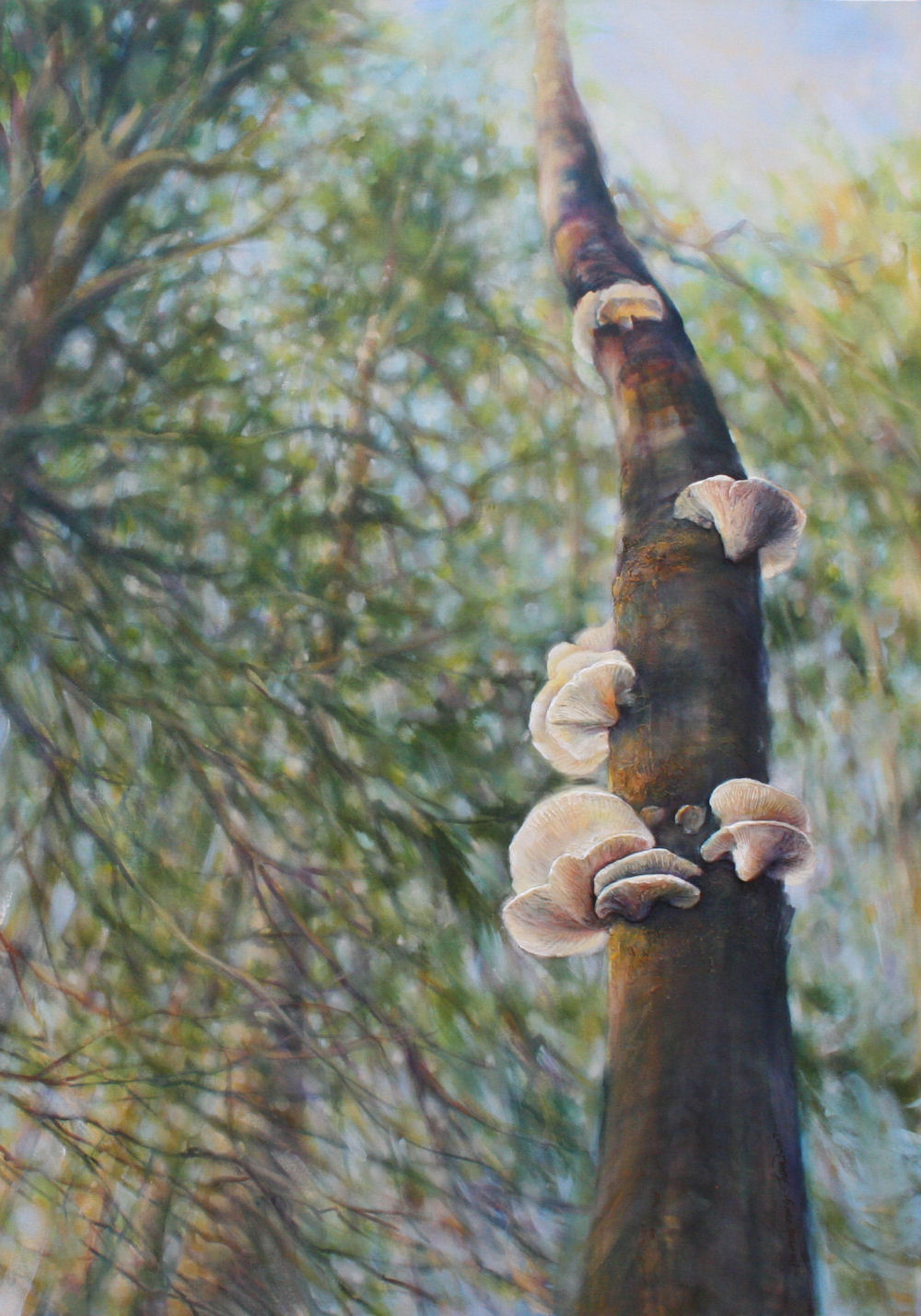 Polypore Fungi, 58H x 41W x 2D inches acryilcs, modeling paste on canvas, wrapped sides painted, narrow frame