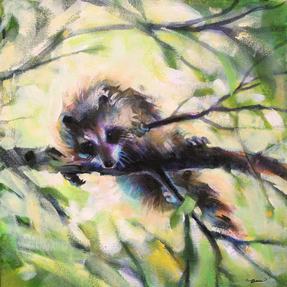 Raccoon, Ottawa, ON Canada, 11H x 11W x 3D inches acrylics on canvas, wrapped sides painted