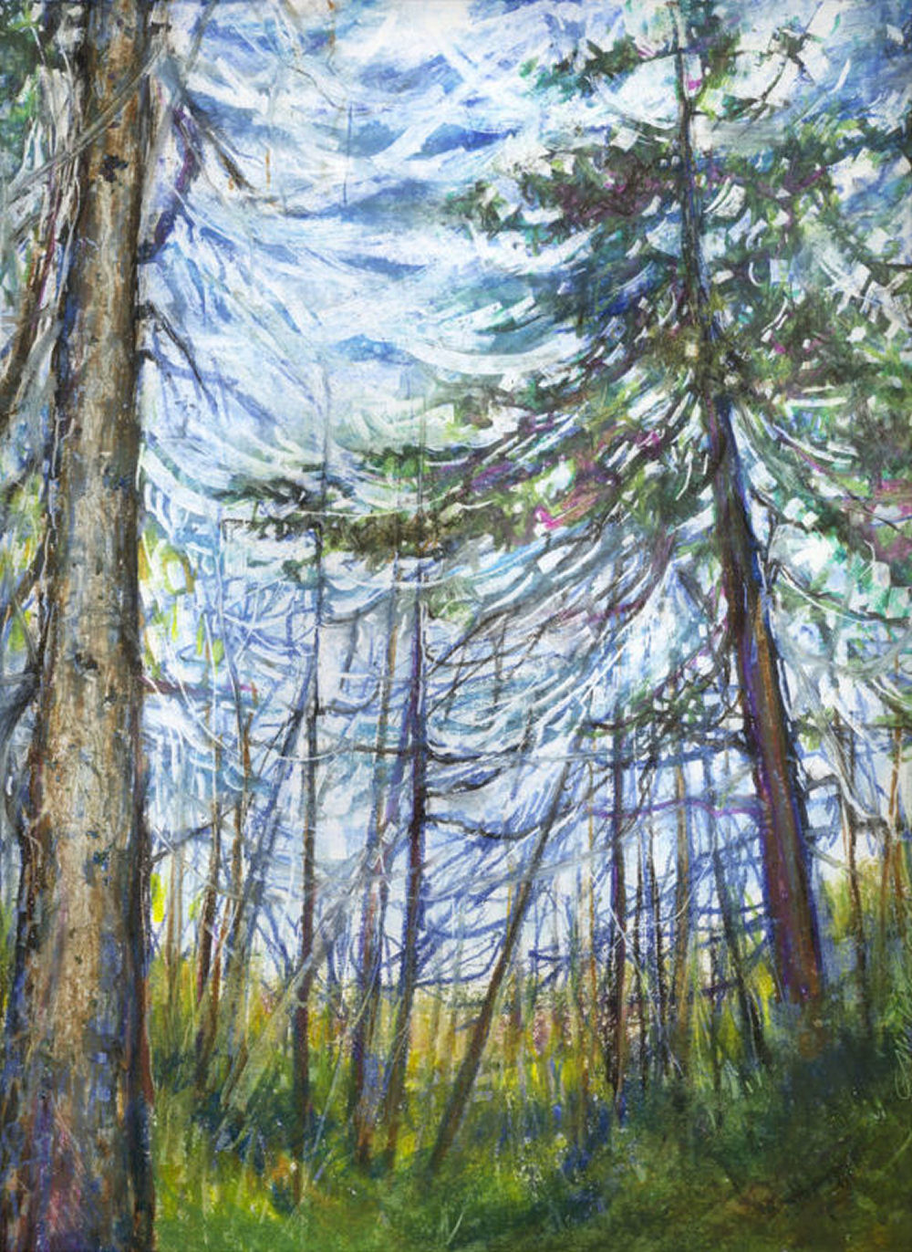 Wild Canada - Stony Swamp Trail, Ottawa, Ontario Canada -14 x 11 inches oil pastels on paper