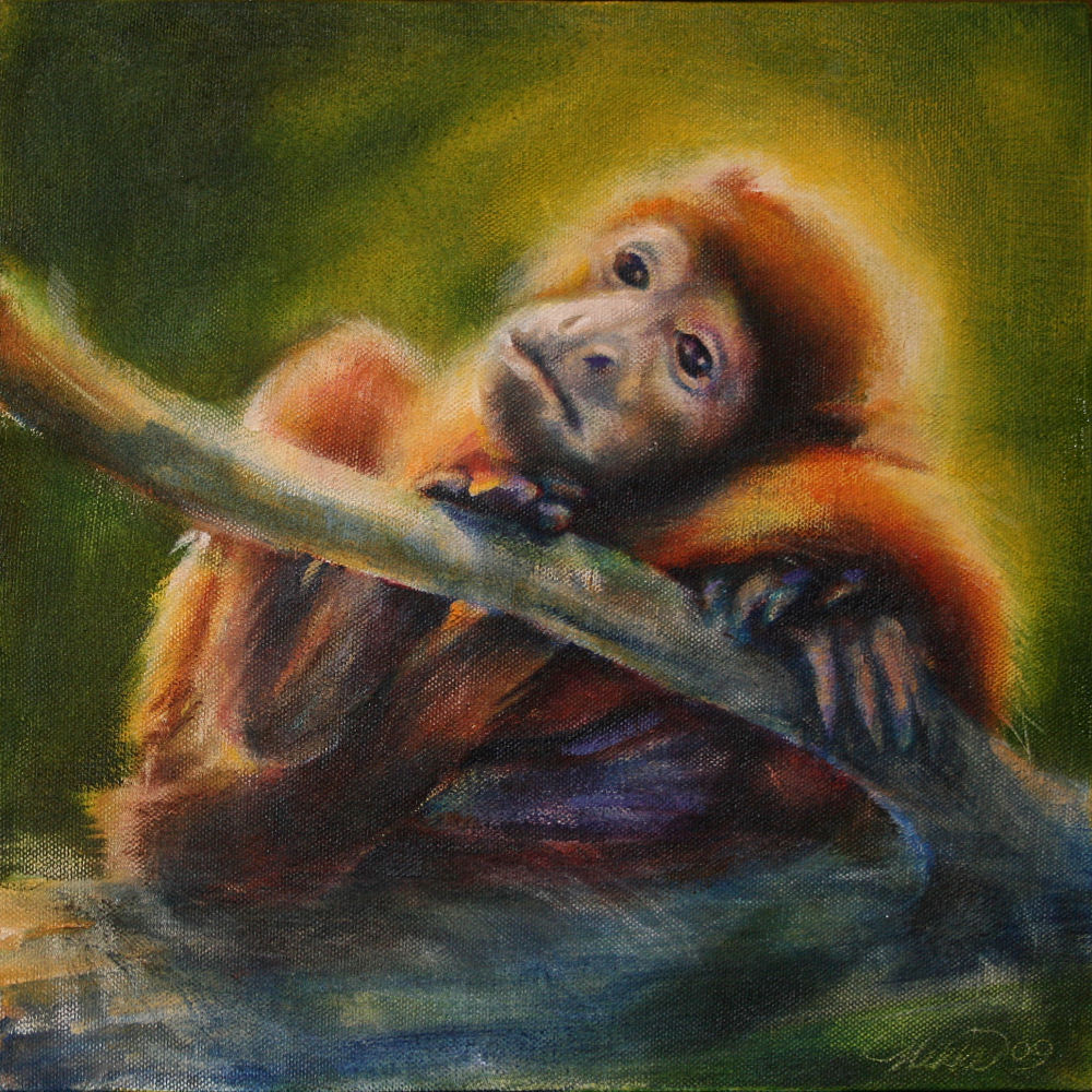 Young Howler Monkey, Dallas World Aquarium, Texas - 11H x 11W x 3D acrylics on canvas, sides painted