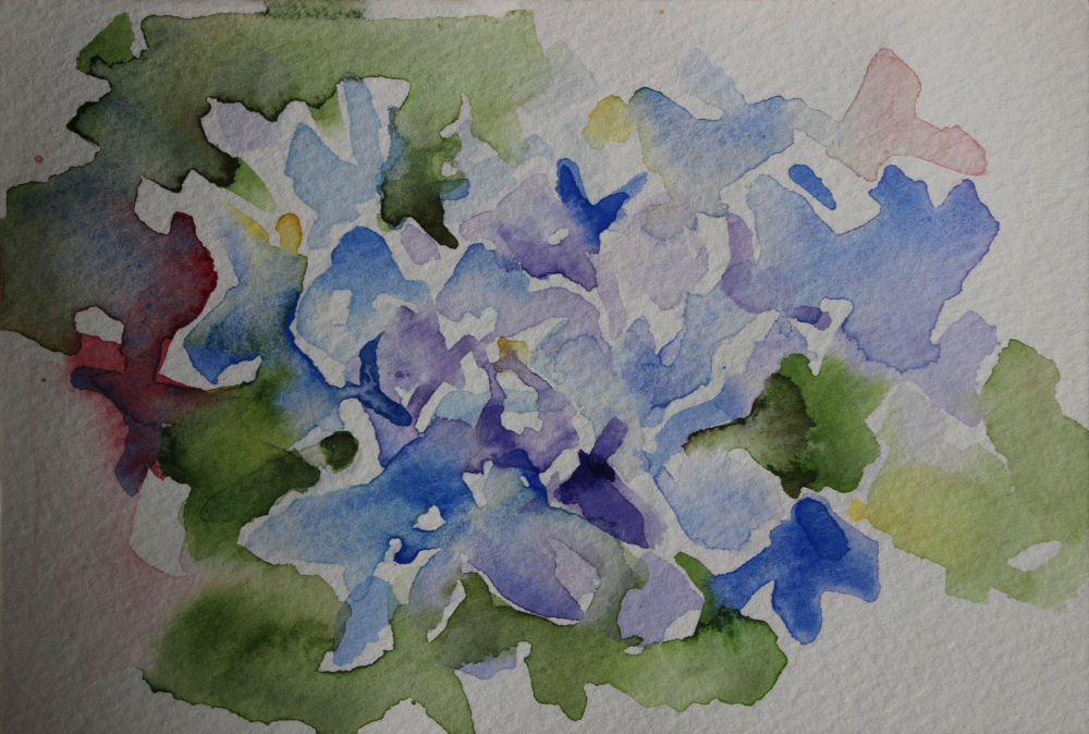 Hydrangeas, 4 x 6 inch watercolor