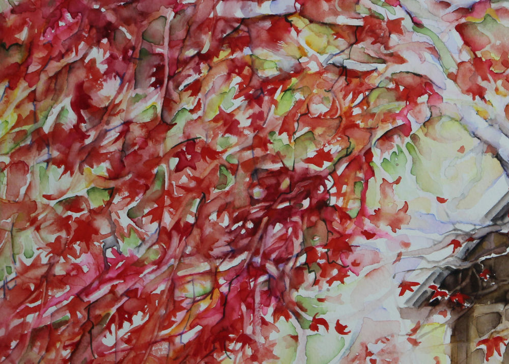 Japanese Maple, left detail of 20W x 15H inches