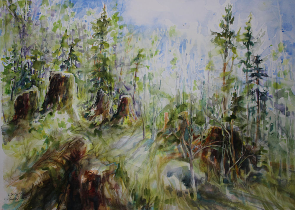 Clearcut, Tillimook OR - 18 x 24 inches watercolors on 140 lb cold press