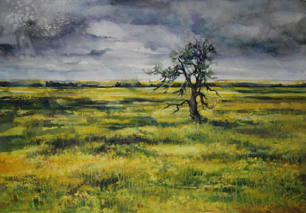 Smoky Lake Canola, 14 x 20 inches watercolors on 140 lb. cold pressed